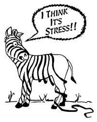 Stress_anxiety